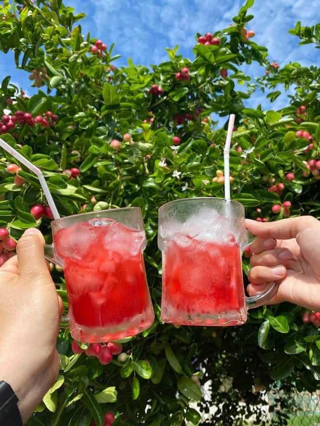 Những ly siro giữa hè tươi mát